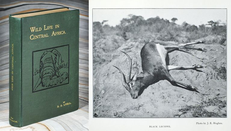 Wild Life in Central Africa. Denis D. Lyell.