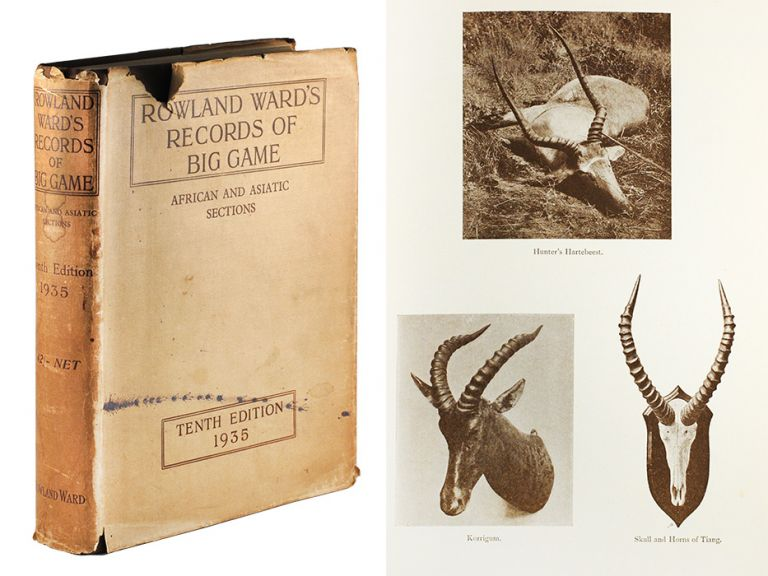 Rowland Ward's Records of Big Game African and Asiatic Sections with Their Distribution, Characteristics, Dimensions, Weights, and Horn & Tusk Measurements. Guy And J. B. Burlace Dollman.
