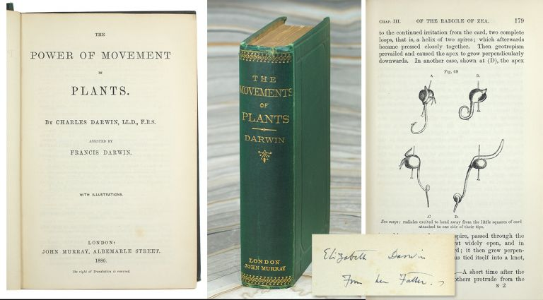 The Power of Movement in Plants. Charles Darwin, Francis Darwin.