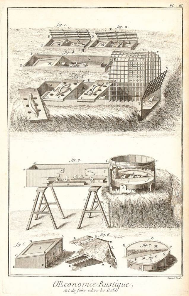 Agriculture, Art de faire Éclore les Poulets (How to Hatch Chicken Eggs). Encyclopédie, ou dictionnaire raisonné des sciences, des arts et des métiers. Plates vol. 1. Denis Diderot.