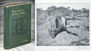Wild Life in Central Africa. Denis D. Lyell
