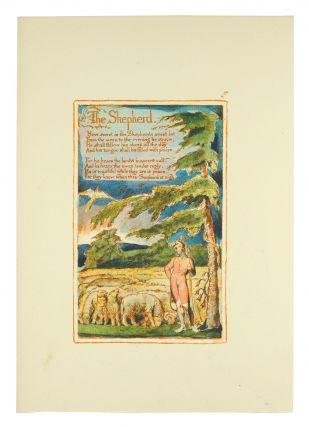 Songs of Innocence and of Experience, Plate 5: The Shepherd.